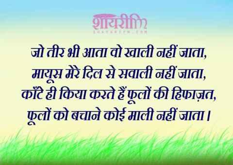 Hindi Shayari, Phoolo Ki Hifazat